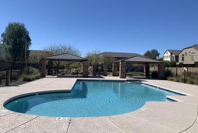 2725 E Mine Creek Road #1151, Phoenix, AZ 85024 (MLS #6198215) :: Executive Realty Advisors
