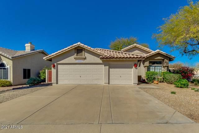 6664 E Omega Street, Mesa, AZ 85215 (MLS #6198223) :: Yost Realty Group at RE/MAX Casa Grande