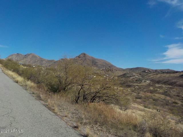 341 Valley View Drive, Rio Rico, AZ 85648 (MLS #6198302) :: Yost Realty Group at RE/MAX Casa Grande