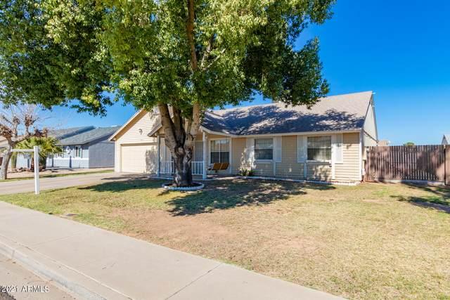 7108 W Cholla Street, Peoria, AZ 85345 (MLS #6198309) :: Yost Realty Group at RE/MAX Casa Grande