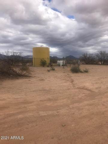 12971 W Blue Aloe Street, Tucson, AZ 85735 (MLS #6198328) :: Service First Realty