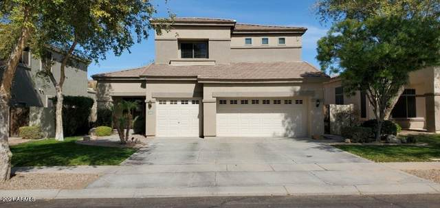 4292 E Branded Road, Gilbert, AZ 85297 (MLS #6198435) :: Yost Realty Group at RE/MAX Casa Grande