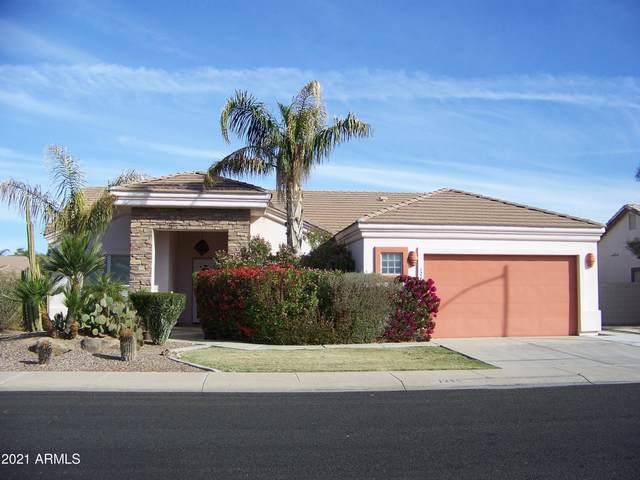 1245 E Melrose Loop, Casa Grande, AZ 85122 (MLS #6198524) :: BVO Luxury Group