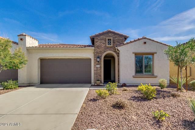 3975 N 163RD Lane, Goodyear, AZ 85395 (MLS #6198561) :: Service First Realty