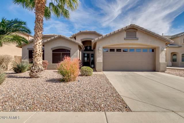 21567 N Backus Drive, Maricopa, AZ 85138 (MLS #6198581) :: Service First Realty
