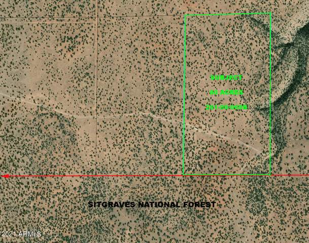 00XX E 80 Acres, Heber, AZ 85928 (MLS #6198640) :: Dave Fernandez Team | HomeSmart