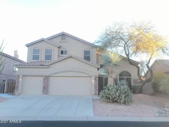 3219 N Boulder Canyon Canyon, Mesa, AZ 85207 (MLS #6198657) :: Walters Realty Group