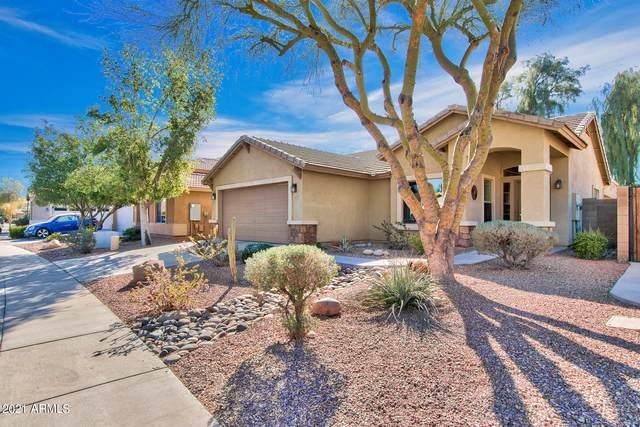 5747 W Novak Way, Laveen, AZ 85339 (MLS #6198690) :: Yost Realty Group at RE/MAX Casa Grande