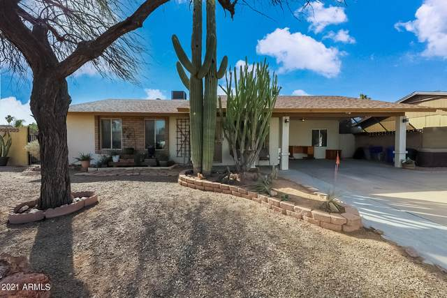 543 E Silver Reef Road, Casa Grande, AZ 85122 (MLS #6198784) :: The Property Partners at eXp Realty
