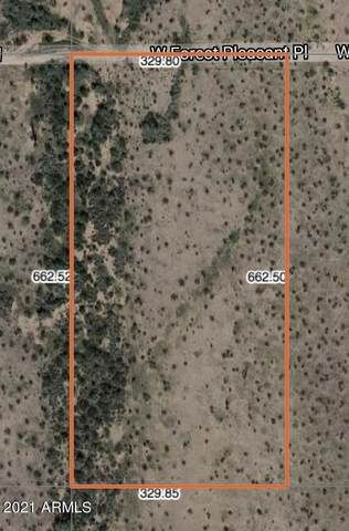 30130 W Forest Pleasant Place, Wittmann, AZ 85361 (MLS #6198843) :: The Carin Nguyen Team
