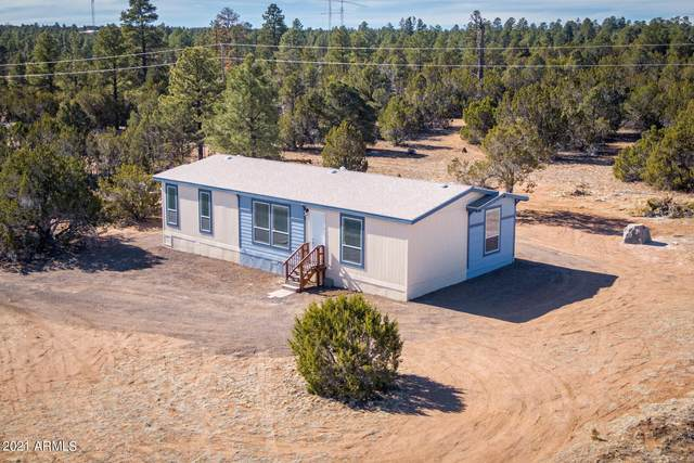 3356 Basin Road, Overgaard, AZ 85933 (MLS #6198873) :: Midland Real Estate Alliance
