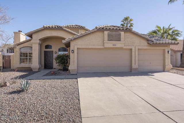 19025 N 36TH Way, Phoenix, AZ 85050 (MLS #6198878) :: The Copa Team | The Maricopa Real Estate Company