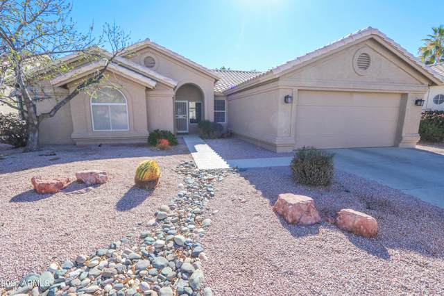 24725 S Stoney Lake Drive, Sun Lakes, AZ 85248 (MLS #6198879) :: Yost Realty Group at RE/MAX Casa Grande