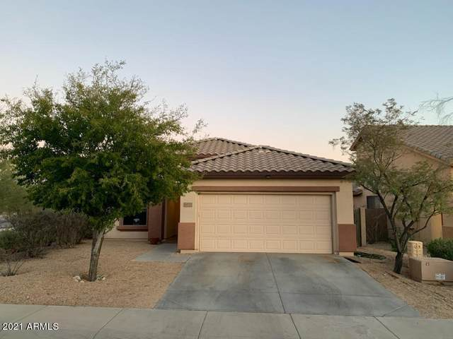 40223 N High Noon Way, Phoenix, AZ 85086 (MLS #6198882) :: My Home Group