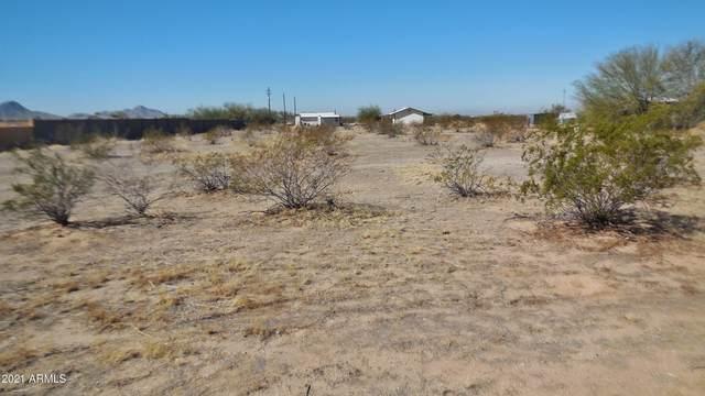 126XX S 190th Avenue, Buckeye, AZ 85326 (MLS #6198996) :: Yost Realty Group at RE/MAX Casa Grande