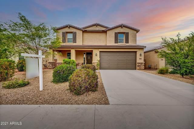 806 W Blue Ridge Drive, San Tan Valley, AZ 85140 (MLS #6199034) :: Yost Realty Group at RE/MAX Casa Grande