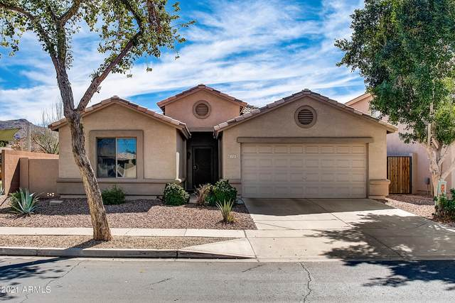 1729 E Beautiful Lane, Phoenix, AZ 85042 (MLS #6199092) :: The Daniel Montez Real Estate Group