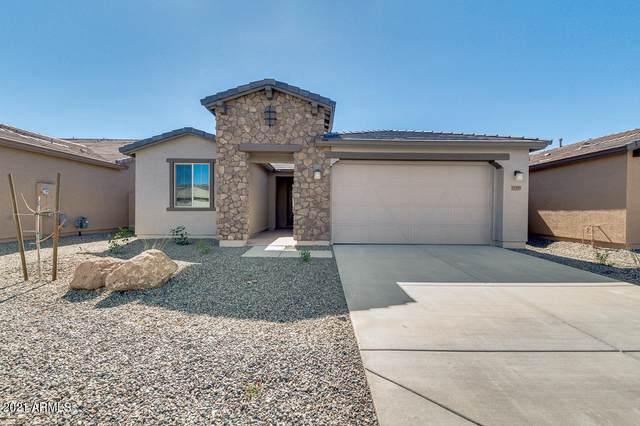 11569 W Levi Drive, Avondale, AZ 85323 (MLS #6199198) :: Yost Realty Group at RE/MAX Casa Grande