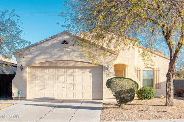 15214 W Shaw Butte Drive, Surprise, AZ 85379 (MLS #6199224) :: Long Realty West Valley