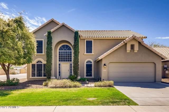 3647 E Rockwood Drive, Phoenix, AZ 85050 (MLS #6199409) :: Yost Realty Group at RE/MAX Casa Grande