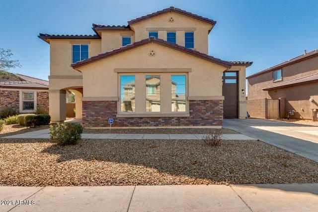 7911 W Atlantis Way, Phoenix, AZ 85043 (MLS #6199412) :: Yost Realty Group at RE/MAX Casa Grande