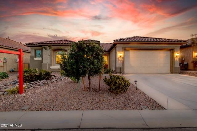 7297 W Sandpiper Way, Florence, AZ 85132 (MLS #6199438) :: Yost Realty Group at RE/MAX Casa Grande
