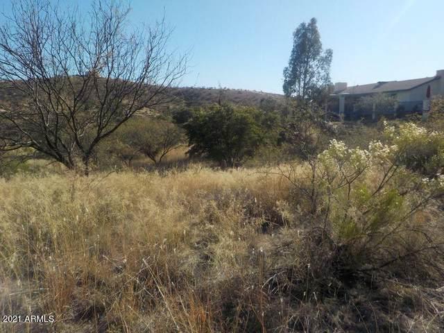 1482 E Patagonia Highway, Nogales, AZ 85621 (MLS #6199456) :: Yost Realty Group at RE/MAX Casa Grande