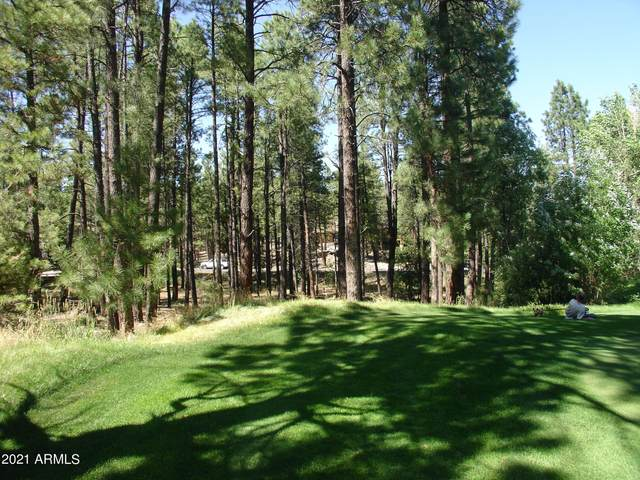 3764 Griffiths Spring, Flagstaff, AZ 86005 (MLS #6199488) :: Executive Realty Advisors