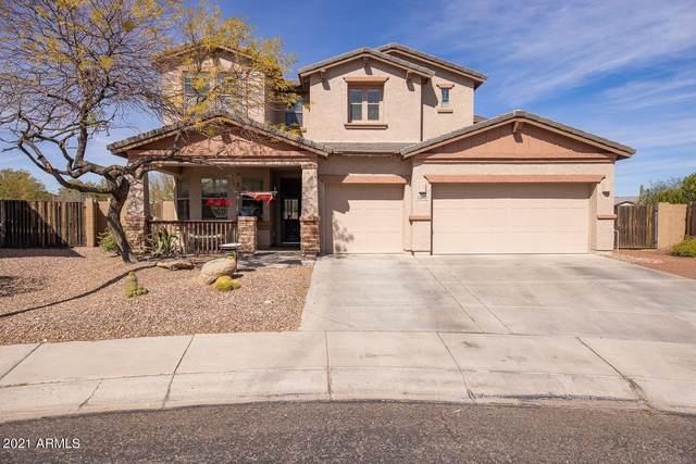 12610 W Chucks Avenue, Peoria, AZ 85383 (MLS #6199578) :: Midland Real Estate Alliance
