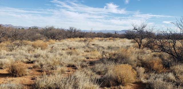 TBD N Faded Love Lane, Benson, AZ 85602 (MLS #6199585) :: Yost Realty Group at RE/MAX Casa Grande