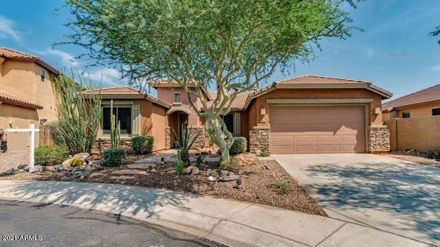 40617 N Peale Court, Anthem, AZ 85086 (MLS #6199630) :: CANAM Realty Group