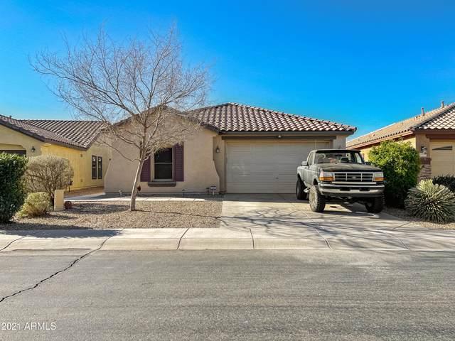 40165 W Tamara Lane, Maricopa, AZ 85138 (MLS #6199672) :: Yost Realty Group at RE/MAX Casa Grande