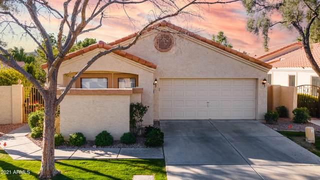 341 E Stonebridge Drive, Gilbert, AZ 85234 (MLS #6199712) :: The Ethridge Team