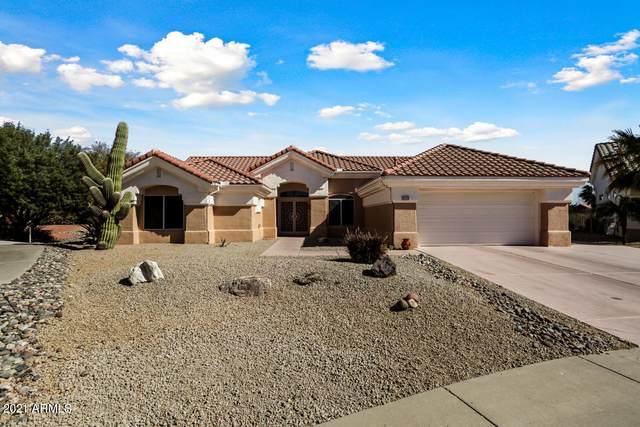 22015 N Mirage Lane, Sun City West, AZ 85375 (MLS #6199725) :: Maison DeBlanc Real Estate