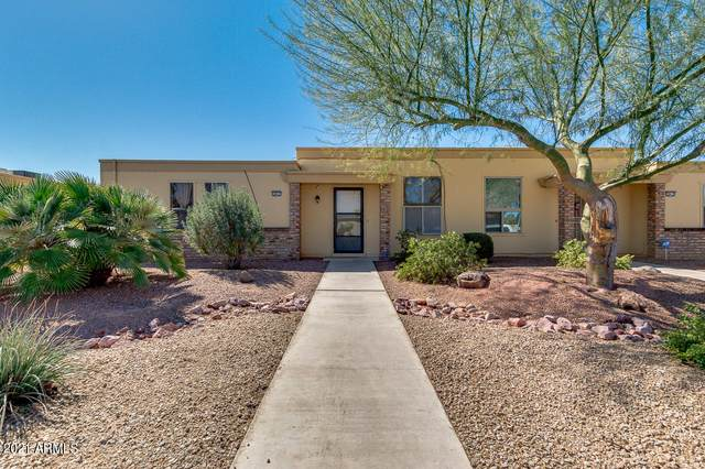 10017 W Forrester Drive, Sun City, AZ 85351 (MLS #6199751) :: Yost Realty Group at RE/MAX Casa Grande
