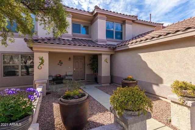 3223 W Molly Lane, Phoenix, AZ 85083 (MLS #6199823) :: Arizona Home Group