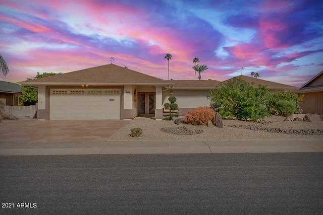 10738 W Tropicana Circle, Sun City, AZ 85351 (#6199833) :: AZ Power Team