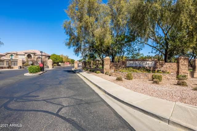 4341 N 129TH Drive, Litchfield Park, AZ 85340 (MLS #6199925) :: The Carin Nguyen Team