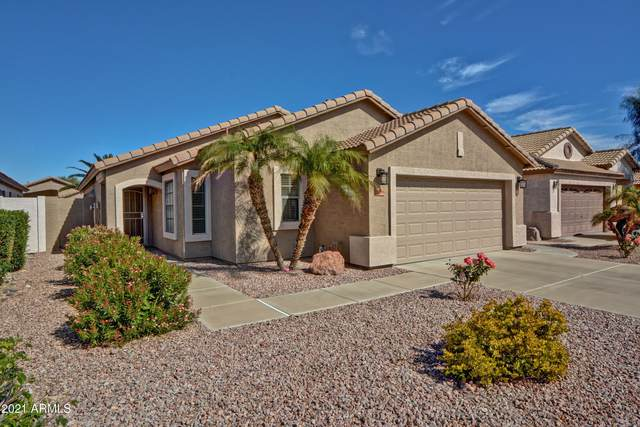 10396 W Tonopah Drive, Peoria, AZ 85382 (MLS #6199952) :: Midland Real Estate Alliance