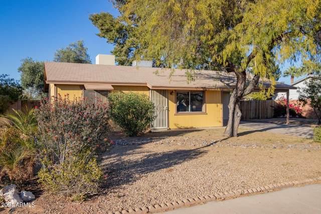 4028 E Crocus Drive, Phoenix, AZ 85032 (MLS #6199981) :: Executive Realty Advisors