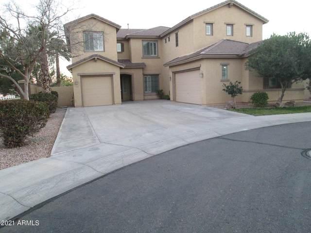 3997 E Scorpio Place, Chandler, AZ 85249 (#6200044) :: AZ Power Team