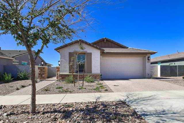 5856 S Wildrose, Mesa, AZ 85212 (MLS #6200138) :: My Home Group