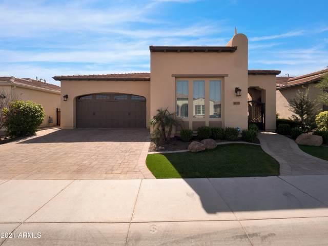 1175 E Copper Hollow, Queen Creek, AZ 85140 (MLS #6200195) :: My Home Group