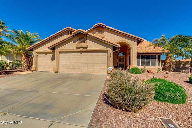 20646 N 110TH Avenue, Sun City, AZ 85373 (MLS #6200201) :: Executive Realty Advisors