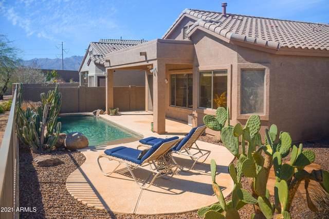 17001 S 30TH Avenue, Phoenix, AZ 85045 (MLS #6200246) :: Yost Realty Group at RE/MAX Casa Grande