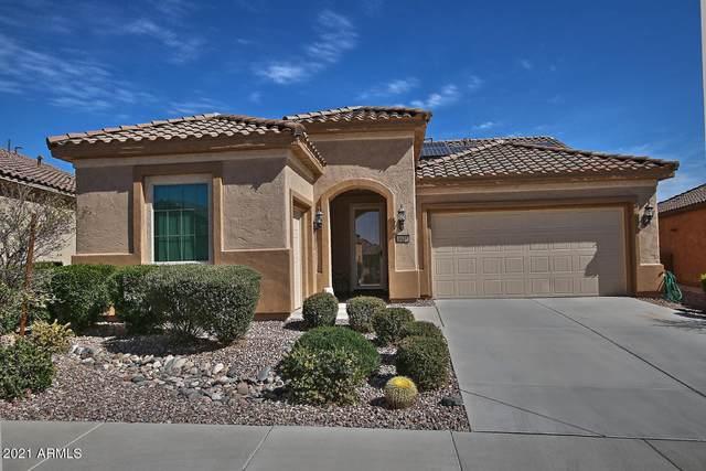 4523 N Petersburg Drive, Florence, AZ 85132 (MLS #6200264) :: My Home Group