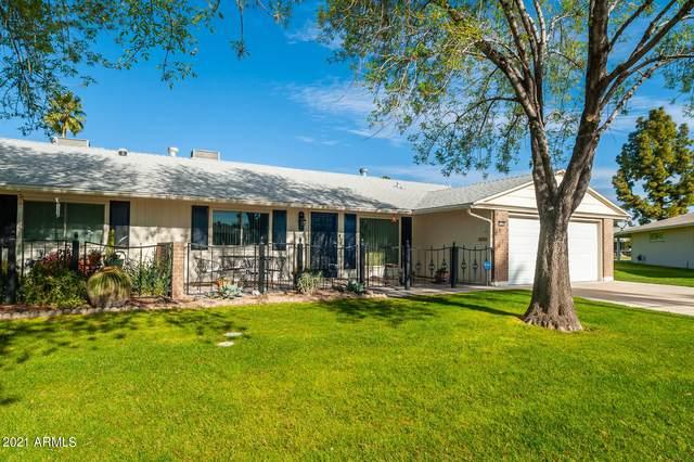 10214 W Forrester Drive, Sun City, AZ 85351 (MLS #6200288) :: Yost Realty Group at RE/MAX Casa Grande