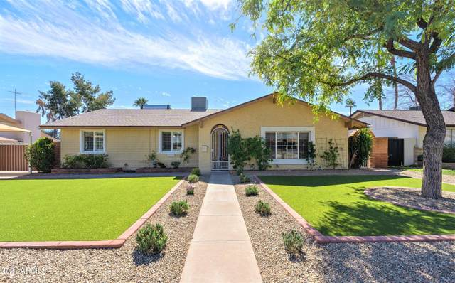 3115 E Lupine Avenue, Phoenix, AZ 85028 (MLS #6200304) :: My Home Group