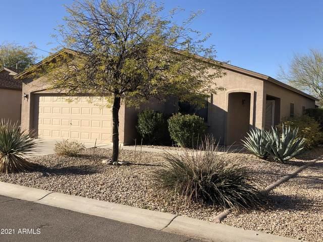 1006 E Renegade Trail, San Tan Valley, AZ 85143 (MLS #6200369) :: D & R Realty LLC
