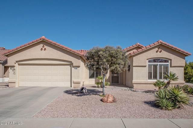 14008 W Rico Drive, Sun City West, AZ 85375 (MLS #6200371) :: The Laughton Team